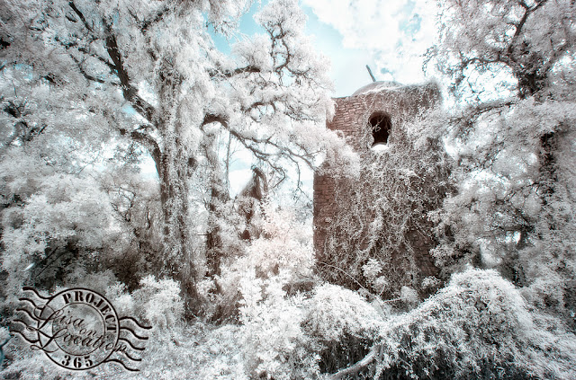 San Xavier Mission replica infrared