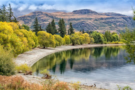 Glendhu Bay, Lake Wanaka, NZ