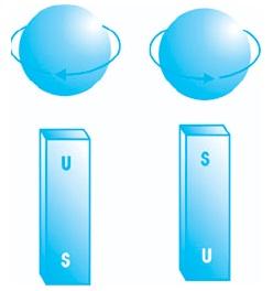 Spin elektron (a) searah jarum jam (b) berlawanan arah dengan jarum jam