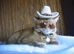 MATÓN CAT, EL GUARDAESPALDAS DE MILORD CAT