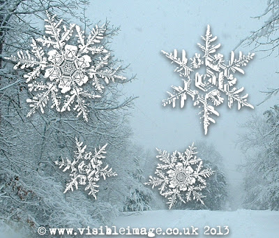 snowflake stamps - Visible Image
