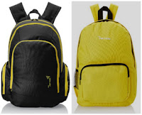 Amazon : Buy Vertical Fuse Casual Backpack at Flat 50% Off:buytoearn