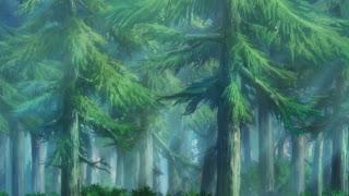 Brasil - Amazônia Floresta