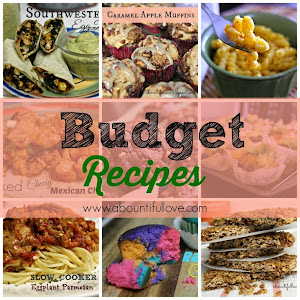 BUDGET FRIENDLY RECIPE