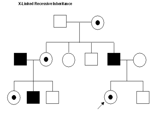 how to tell if a pedigree is recessive