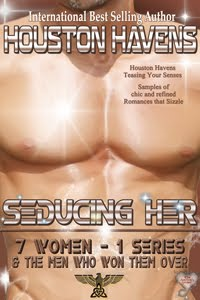 Seducing Her (Teaser Book) by Houston Havens