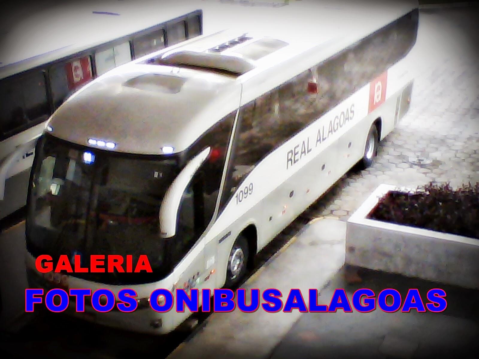 FOTOS  ONIBUSALAGOAS