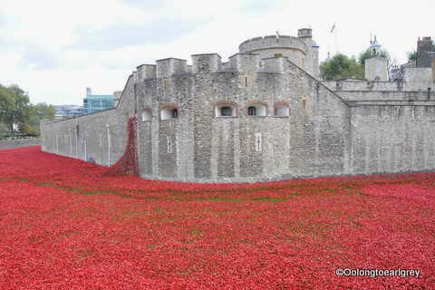 Poppies at The Tower of London, Blood Swept Lands and Seas of Red