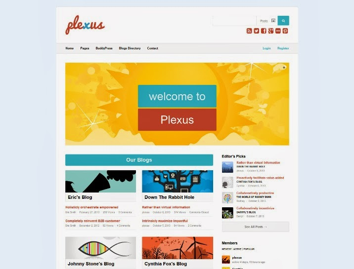 Plexus - Network WordPress & BuddyPress Theme