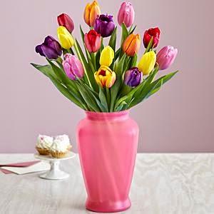 Mufti-Colored Tulips