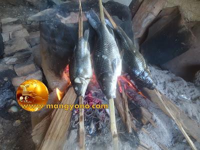 Resep cobek Ikan Mas yang sedap, gurih dan nikmat