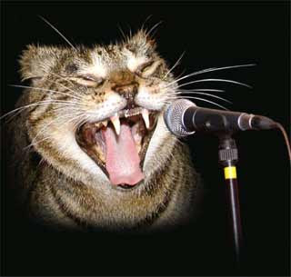 Karaoke italiano gratis online, Karaoke gratis per pc, karaoke gratis online, Karaoke Party