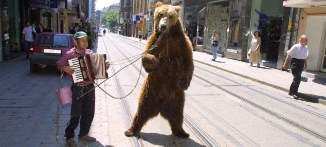 dancing bear short story pdf