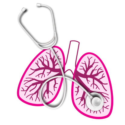 1000  images about Lungs & Respiratory on Pinterest | Florence the ...