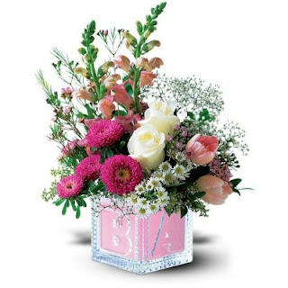 Send Flowers To Welcome a Baby Girl