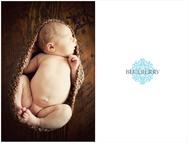 San Francisco sleeping newborn baby photography sesion
