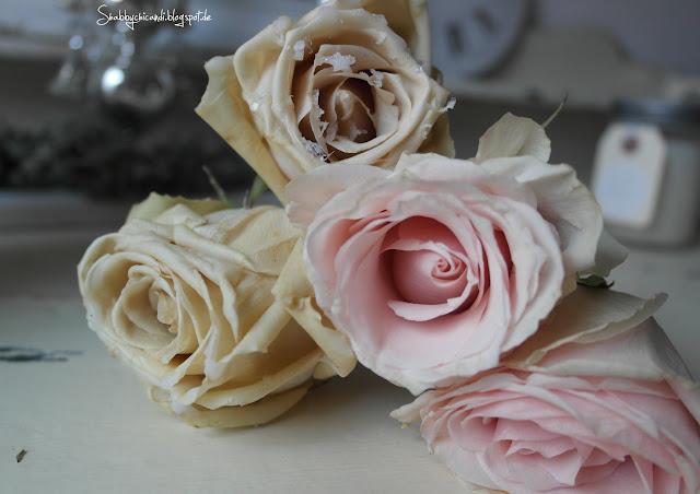 Rosen ohne und mit Wachs