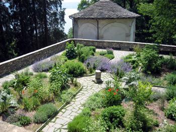 Il giardino delle esperidi il giardino dei semplici - Il giardino dei semplici ...