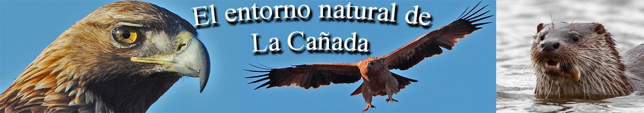 El entorno natural de La Cañada