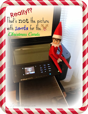 Elf on the Shelf: Pictures in a Christmas card