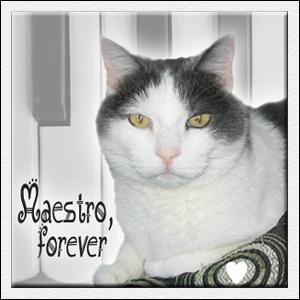 RIP Maestro