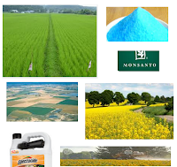 Agricultural Chemicals Stocks