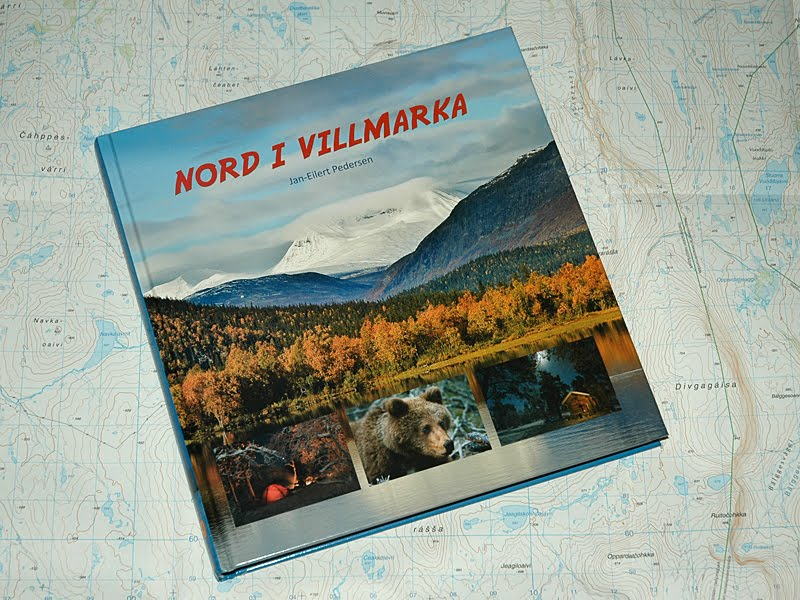 sykepleier blogg Kirkenes