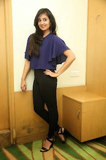 Bhanu Sri Mehra glamorous Pictures 032.jpg