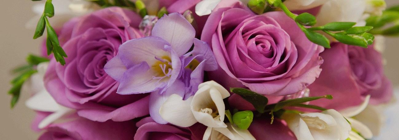 Бесплатная доставка цветов в пятигорске купить цветы в спб ст.м.ломоносовская