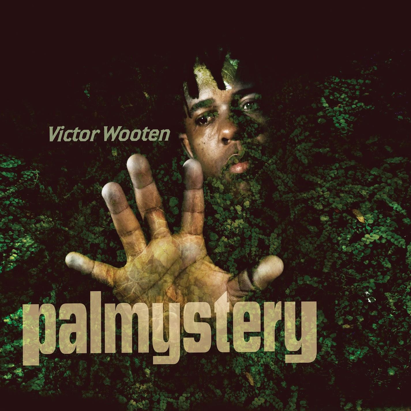 victor-wooten-palmystery.jpg