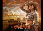 Camelia la Texana capítulo 2, miércoles 26-2-2014
