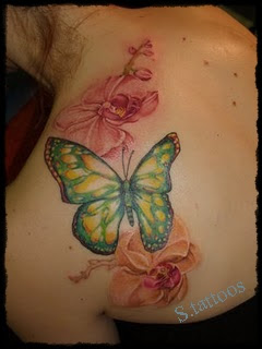 butterfly tattoos design for girl - butterfly tattoos design for girl pictures