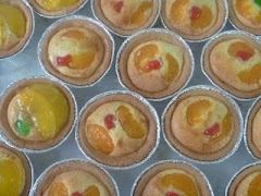 HOLLANDER TARTS