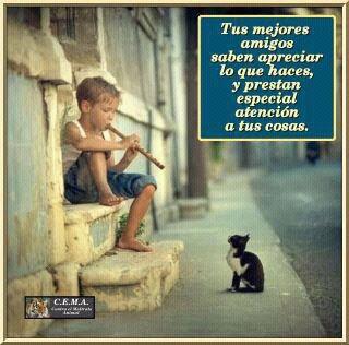 niño tocando la flauta y gato atento
