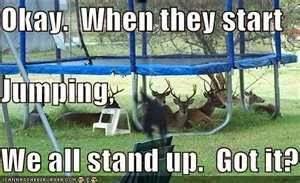 deer get revenge on hunters funny image