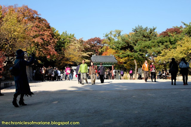 Chandeokgung Palace autumn