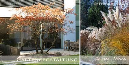 vorgarten modern graser ? godsriddle.info - Moderner Garten Mit Grsern