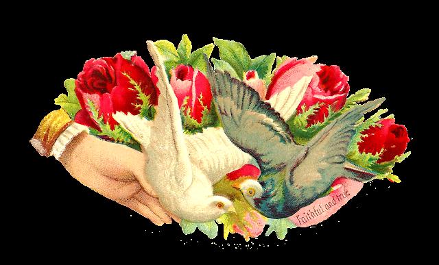http://2.bp.blogspot.com/-2vmtF9PEAck/VK7tTZCh_lI/AAAAAAAAU20/paDw_cOhmU4/s1600/scrap_2_pigeon_faithful_true_gmpng.png
