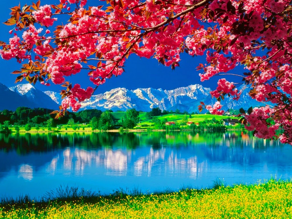 Amazing Nature Wallpapers, Beautiful Nature HD Live