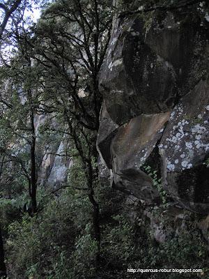 Las paredes del Cerro Viejo en la cara sudoeste