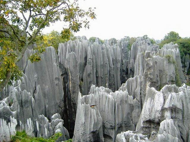 Каменный лес Шилинь в Китае