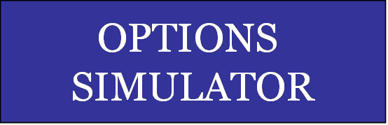 Stock options trading simulator