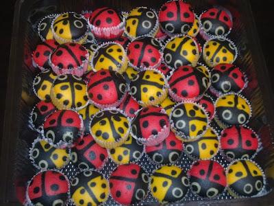 Apam Polkadot Ladybird