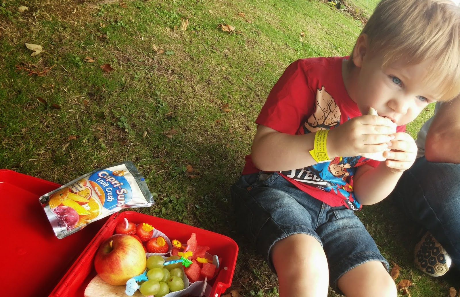 Healthy lunchboxes, Juice drink, #CapriSunSchool, #shop, #cbias