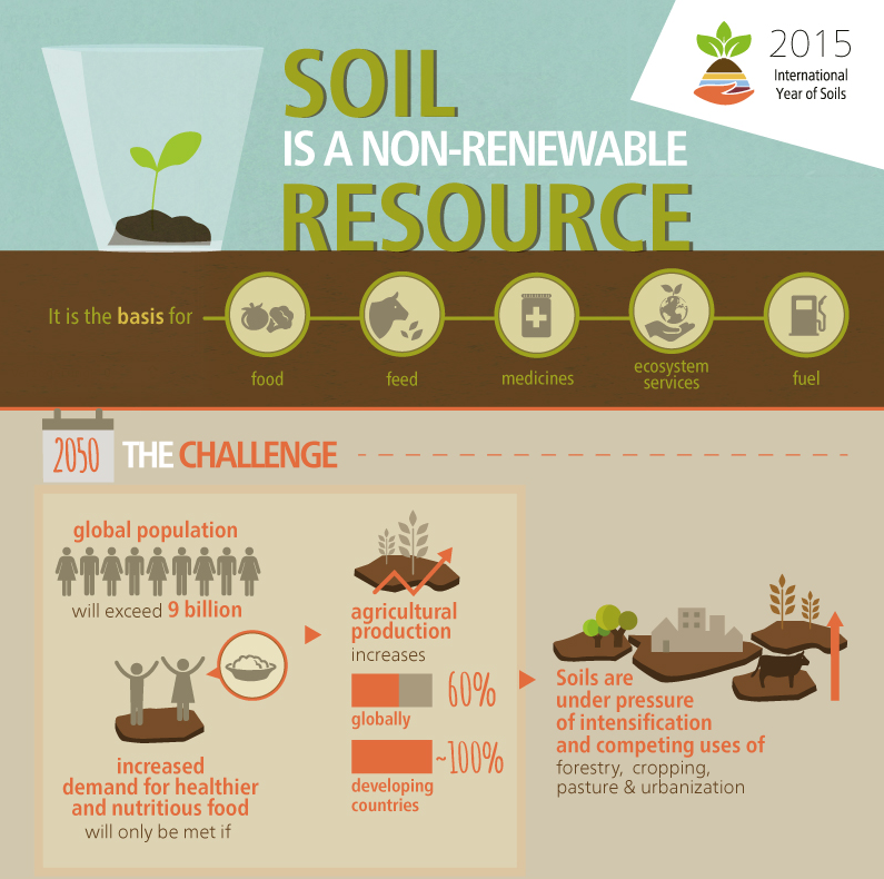 http://www.fao.org/assets/infographics/FAO-Infographic-IYS2015-fs1-en.pdf
