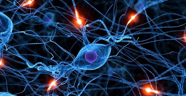 Cientistas descobrem possível causa da esquizofrenia