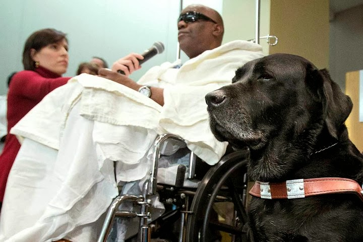 Blind Man Gets to Keep Aging Service Dog Who Saved Him from Subway Disaster