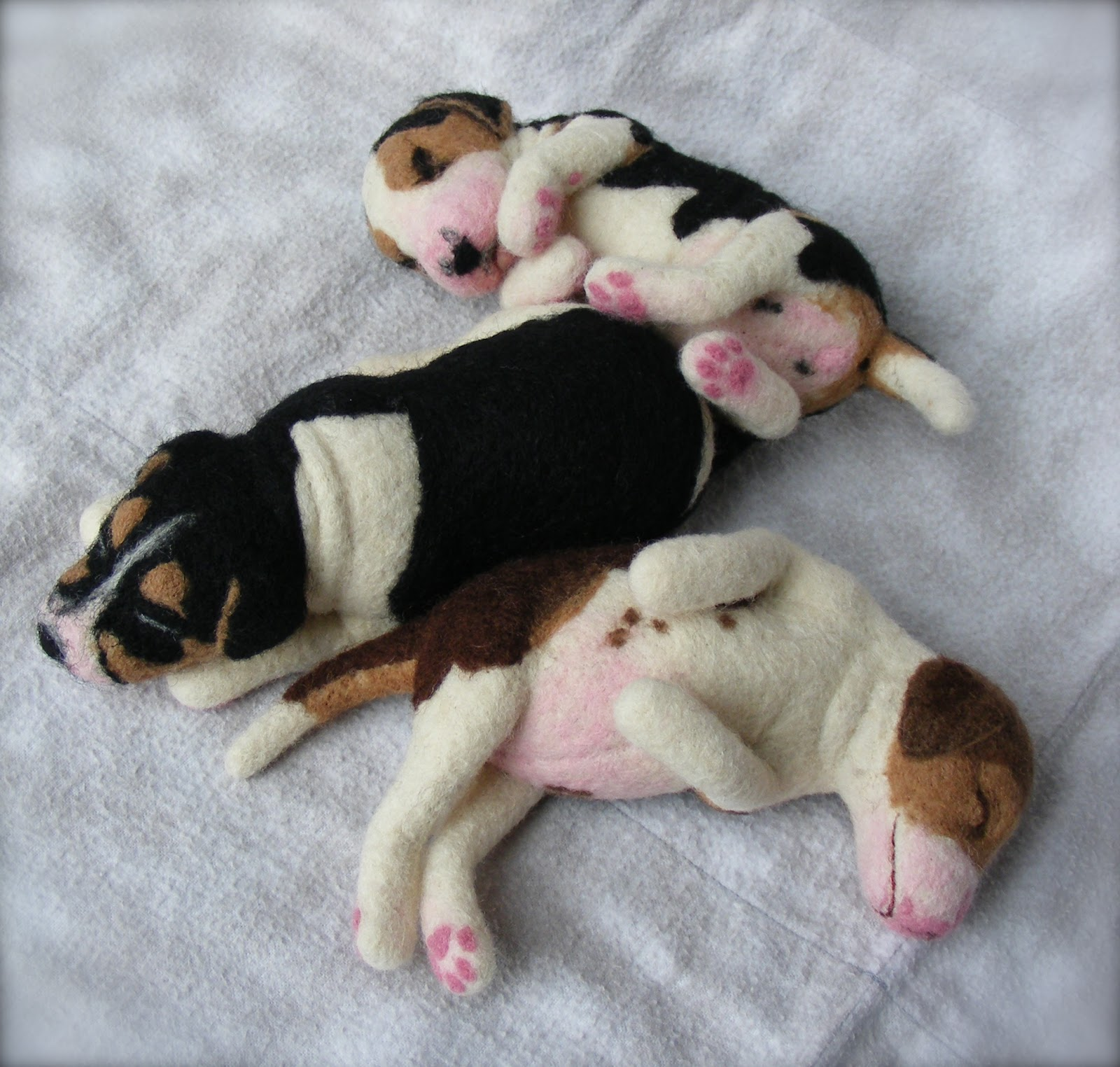 Cute Puppy Dogs: Small beagle puppies