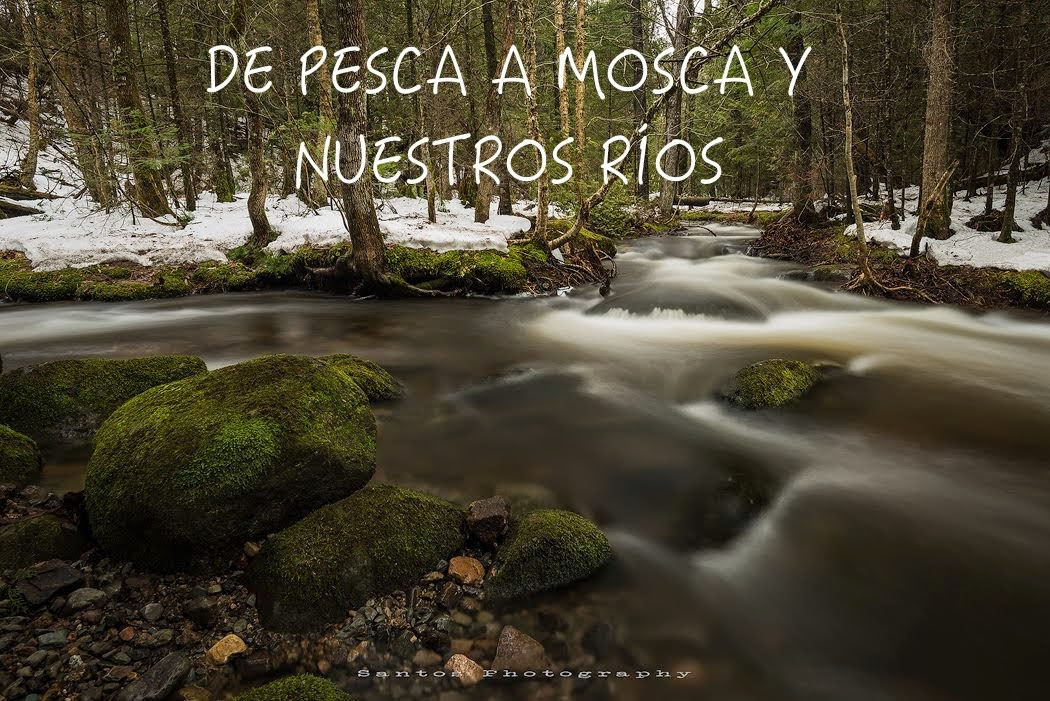 DE PESCA A MOSCA Y NUESTROS RIOS