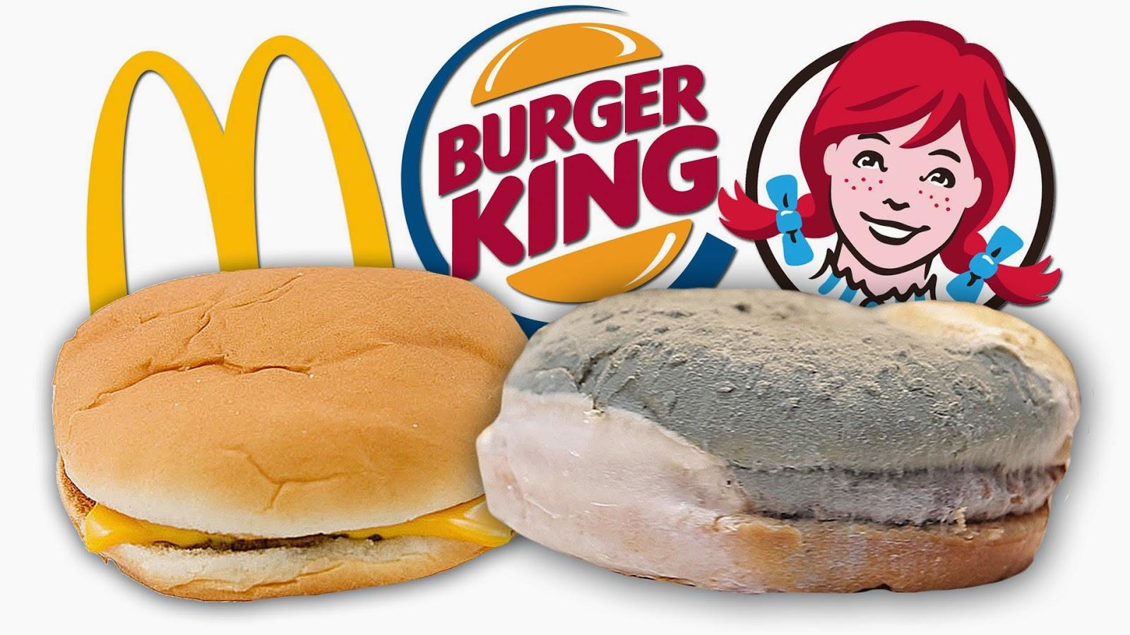 Em quanto tempo o lanche de um restaurante fast-food estraga?